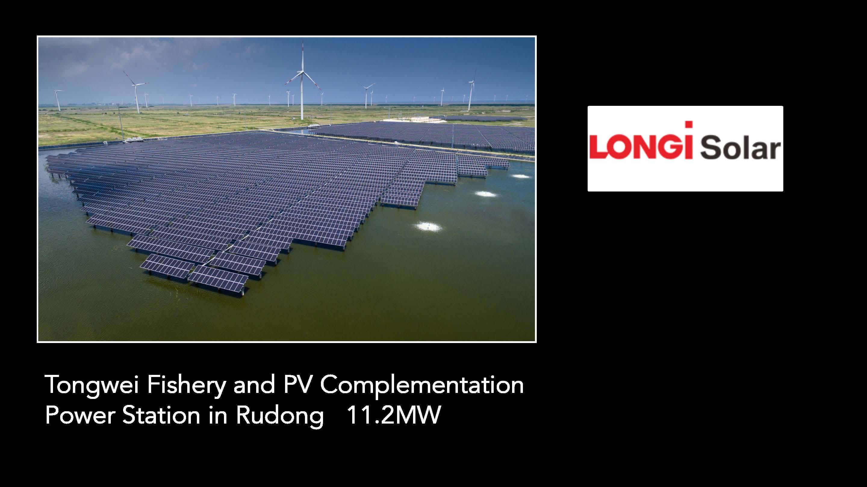 Longi Solar - Impact Solar Sunshine Coast